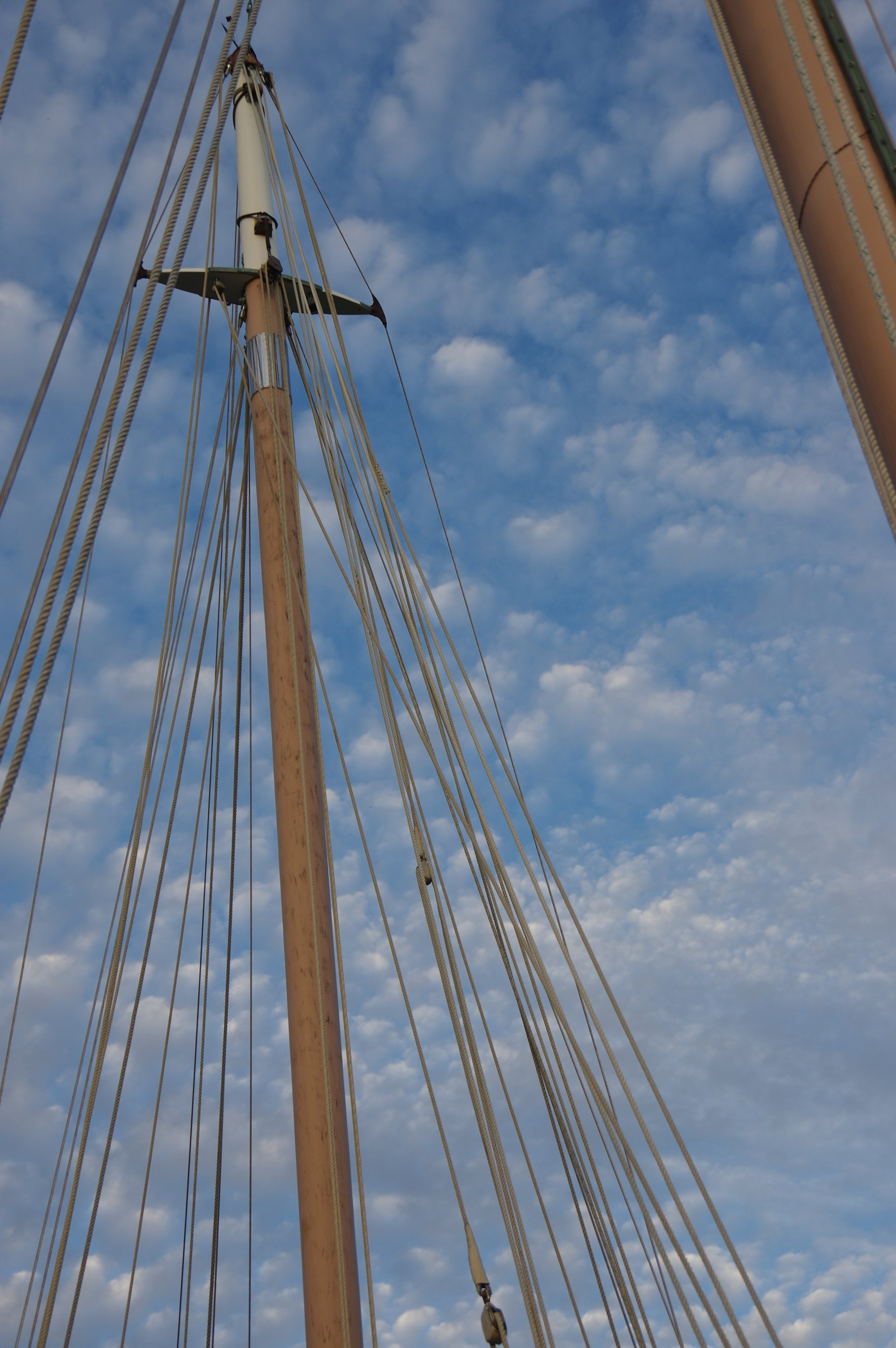masts in the sky